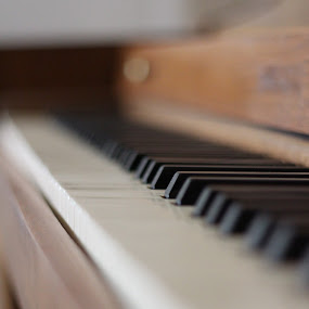 Focus on the Keys by Mathan Tenney - Digital Art Things ( one piano key in focus, piano, upright piano, close-up of piano keyboard, piano keys )