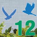 12星鳥占い:人生スペシャル鑑定「5大運命」と「運命の人」 icon