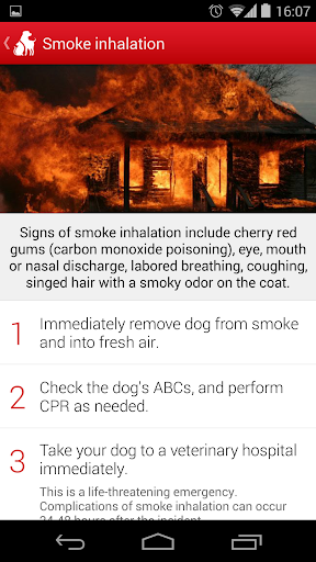 Pet First Aid - Red Cross screenshot