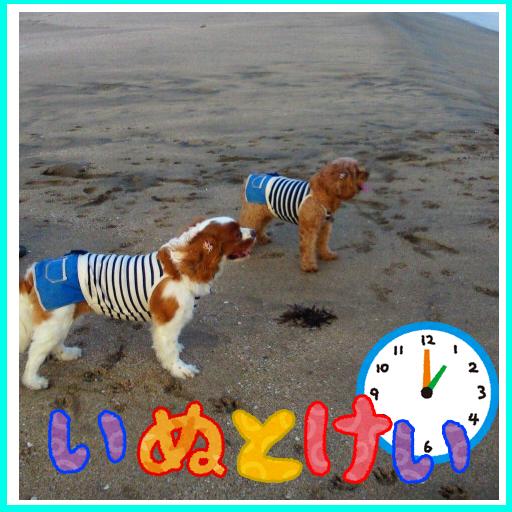 かわいい犬壁紙 【いぬとけい】 個人化 App Store-愛順發玩APP