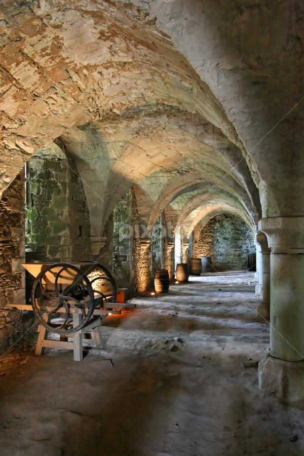 Vaulted cellar by Dominic Jacob - Buildings & Architecture Other Interior ( cellar, vaulted, castel, voutée, cave,  )