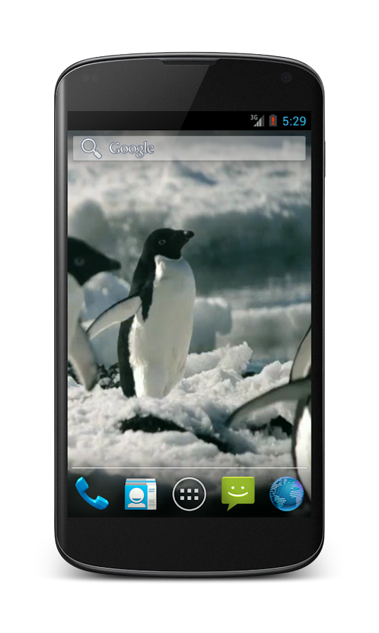 Penguins Free Video Wallpaper- screenshot