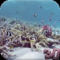 Oceanic Aquarium Wallpaper 3D icon
