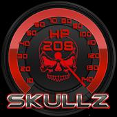 SkullZ Torque Theme OBD 2