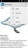 Screenshot of RSPB eGuide to British Birds