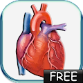Blood Pressure lite APK Descargar