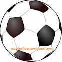 Brighton & Hove Albion FC News logo