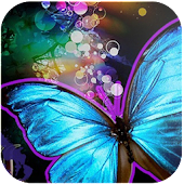Top Butterfly wallpaper