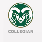Collegian icon