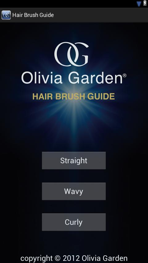 Hair Brush Guide - screenshot