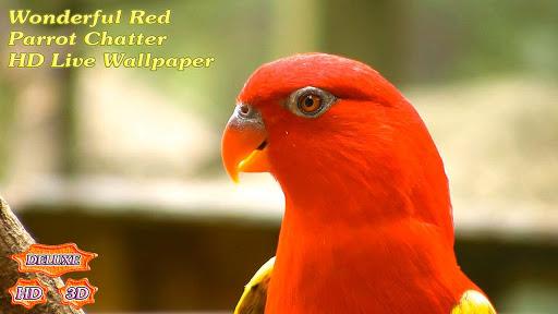 【免費個人化App】Wonderful Red Parrots Chatter-APP點子