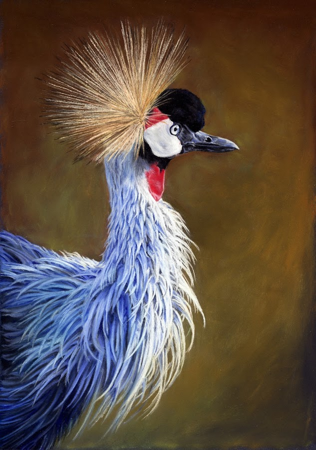 Crowned Crane by Karen Phillips - Drawing All Drawing ( colour, pastel, crane, africa, drawing )