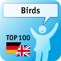 100 Birds Keywords logo