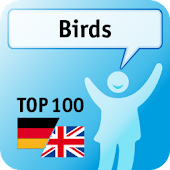 100 Birds Keywords