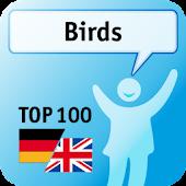 100 Birds Keywords