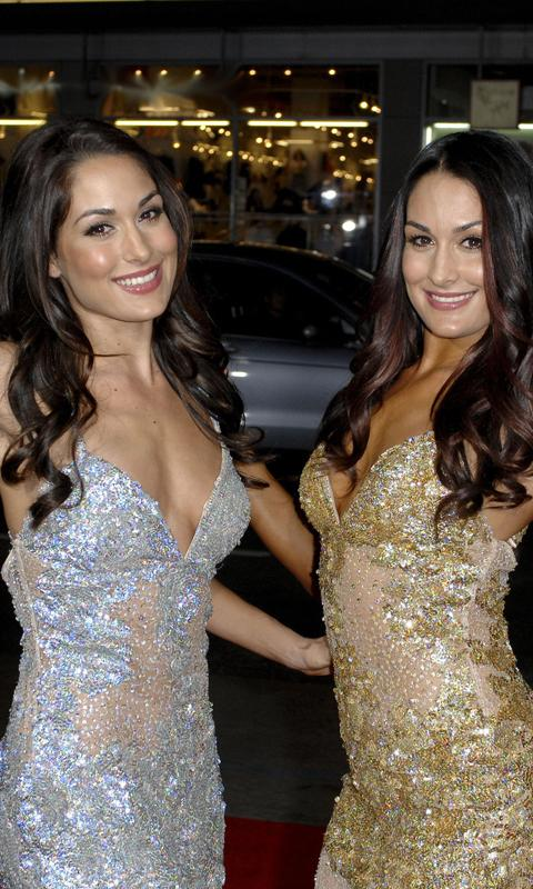 Bella Twins HD Wall+Slide - screenshot