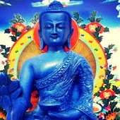 Meditation Trainer