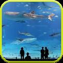 Mega Aquarium Live-Hintergrund icon