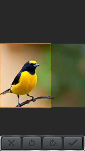 無料摄影Appのフォトエディターを貼り付けカット|HotApp4Game