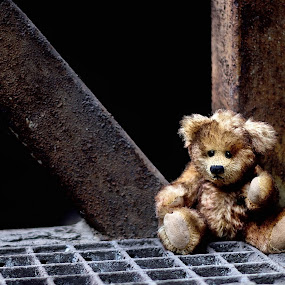lonley by Axel K. Böttcher - Artistic Objects Toys ( lost, loneliness, shabby, teddy,  )