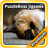 More Cute Cat Jigsaw Puzzles