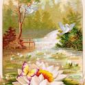 Bird and Butterfly Live wallpa logo