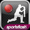 Howzat - World Cricket icon