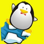 crazy penguins snowball