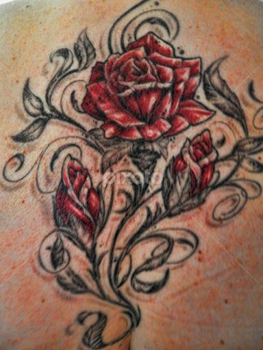 Back Piece Rose Tattoo Body Arttattoos People Pixoto