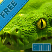 snake live wallpapers free