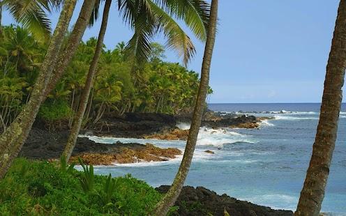 Hawaiian Waves Video & Alarm- screenshot thumbnail