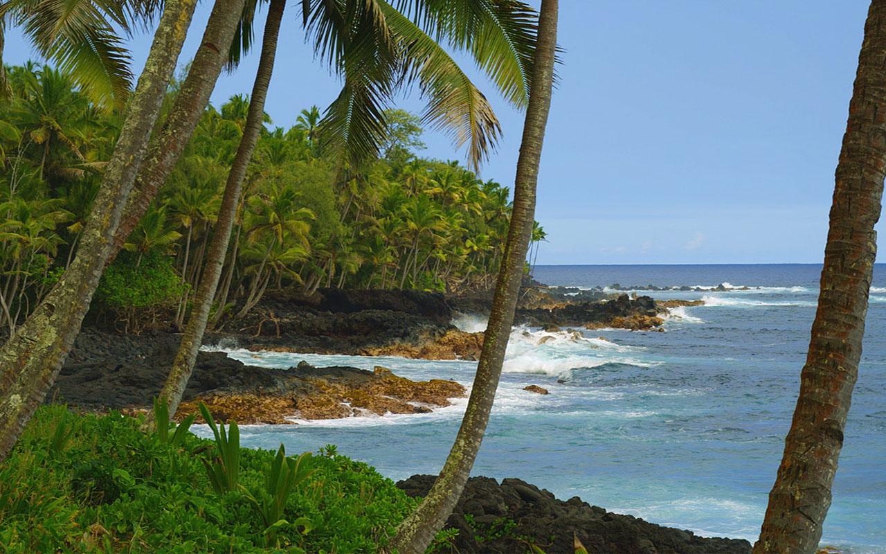 Hawaiian Waves Video & Alarm- screenshot