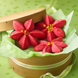 Raspberry Poinsettia Blossoms.