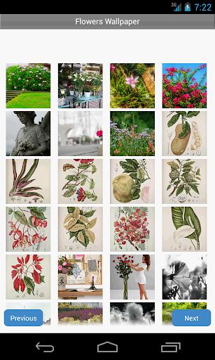 Flowers Wallpaper  screenshots 1