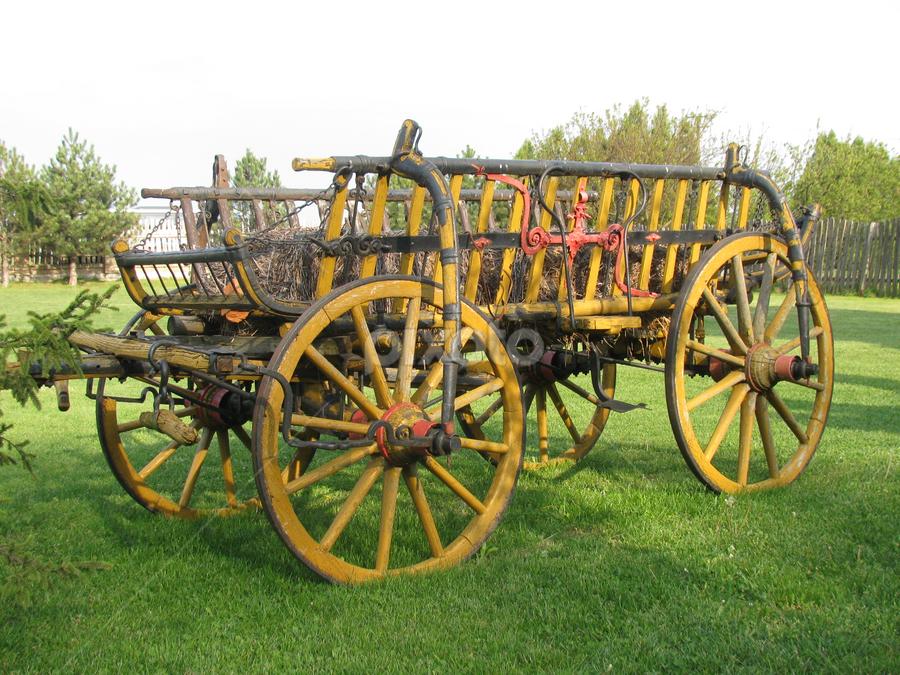 Wooden carts by Biljana Nikolic - Transportation Other (  )