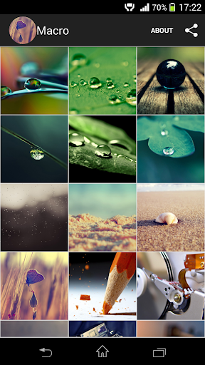 Macro Wallpapers HD