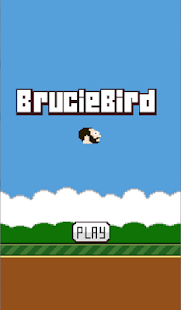 BrucieBird - screenshot thumbnail
