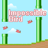 Impossible Bird