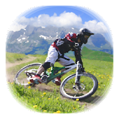 Downhill Champion Lite