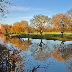 Reflections by Amanda Dacey - Landscapes Prairies, Meadows & Fields ( water, stratford upon avon, reflection, riverside, autumnal, trees, avon, colours, river,  )