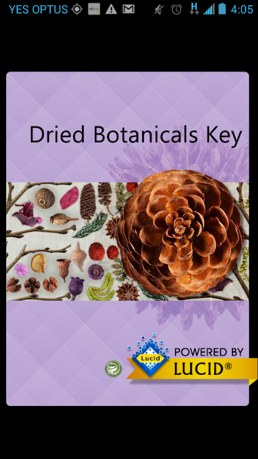 Dried Botanicals Key- screenshot