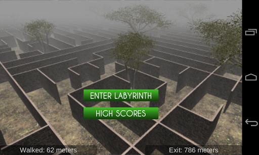 Labyrinth Escape