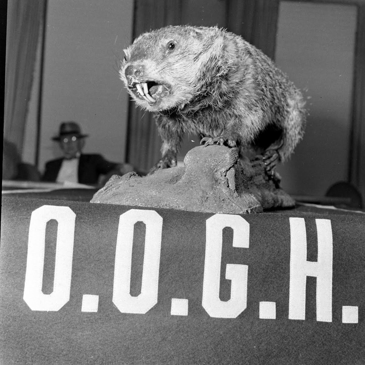 Oriental Order Of Ground Hogs