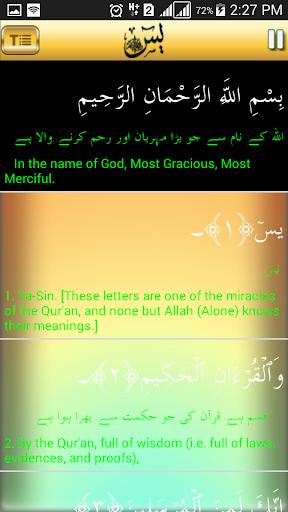 Surah Yaseen - 13 page quran
