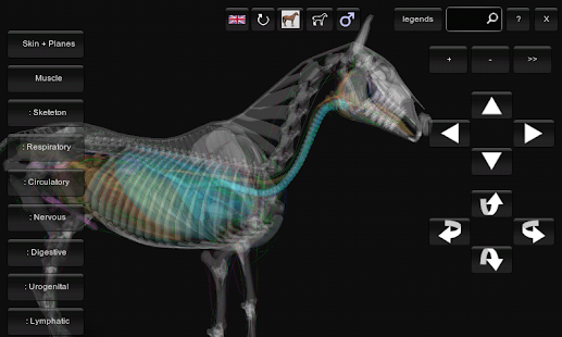3D Horse Anatomy Software - Apps on Google Play