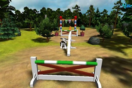 B-Factor Bunny Jumping/Agility - screenshot thumbnail