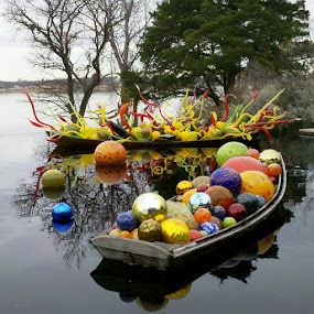 Chihuly by Holly Herrmann - Artistic Objects Glass ( dallas arboretum, chihuly )