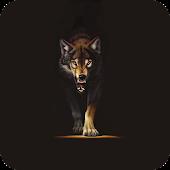 Wolves HQ Live Wallpaper