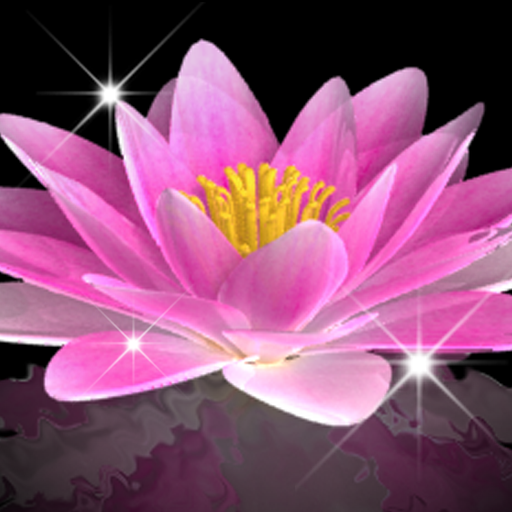 Water Lily Bell LWP Trial Android APK Download Free By Rooty Pict