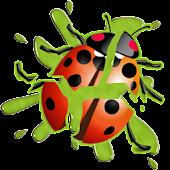 LadyBug Smasher